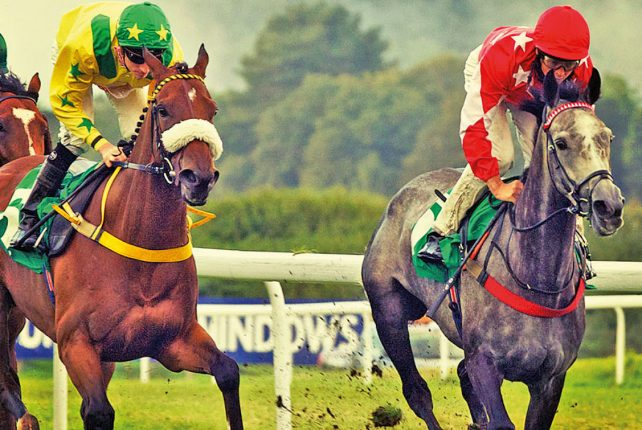 Entertain your clients at Chepstow Racecourse